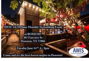 June 14: Networking Mixer