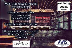 November Monthly NetworkingEvent