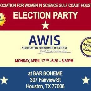 Election Party and April Monthly Networking Event
