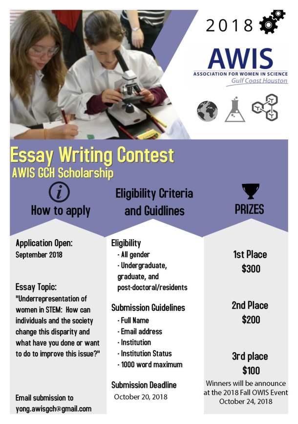 Scholarship Essay Flyer 2018
