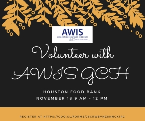 Volunteer with AWIS GCH at Houston Food Bank