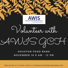 Volunteer with AWIS GCH at Houston FoodBank