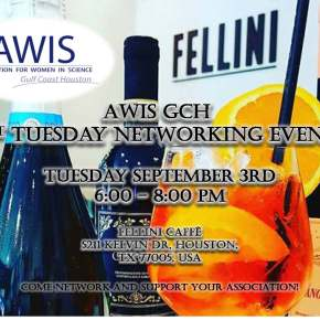 AWIS GCH 1st Tuesday Networking Event