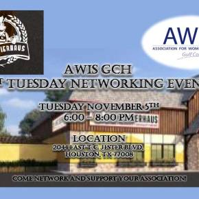 AWIS GCH 1st Tuesday Networking Event November 2019